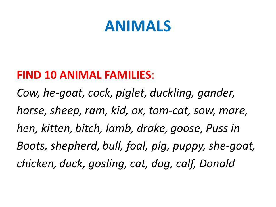 1.Cow – bull – calf – ox 2.She-goat – he-goat – kid 3.Sheep – ram – lamb – shepherd 4.Bitch – dog – puppy 5.Cat – tom-cat – kitten – Puss in the Boots 6.Hen – cock – chicken 7.Sow – pig – piglet 8.Duck – drake – duckling – Donald 9.Goose – gander – gosling 10.Mare – horse – foal