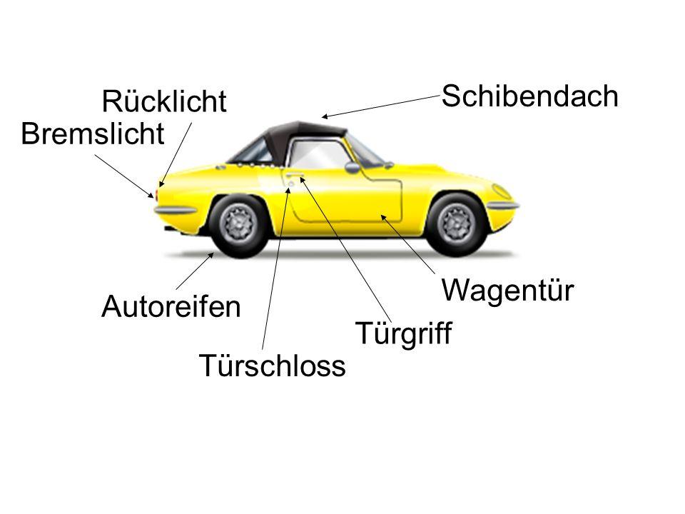 Wagentür Türschloss Schibendach Türgriff Autoreifen Rücklicht Bremslicht