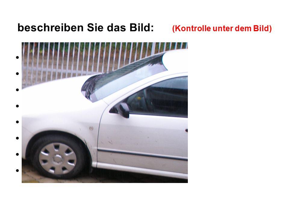 beschreiben Sie das Bild: (Kontrolle unter dem Bild) Windschutzscheibe Rückspiegel Autotür Reifen Autogriff Motorhaube Blinker Scheibenwischer