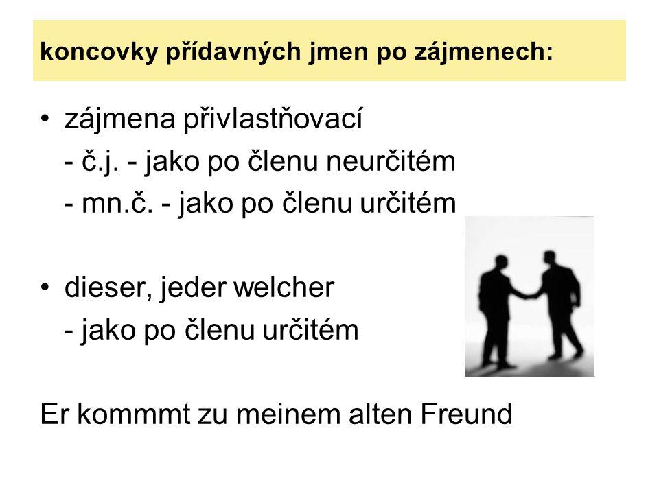 zájmena přivlastňovací - č.j. - jako po členu neurčitém - mn.č.