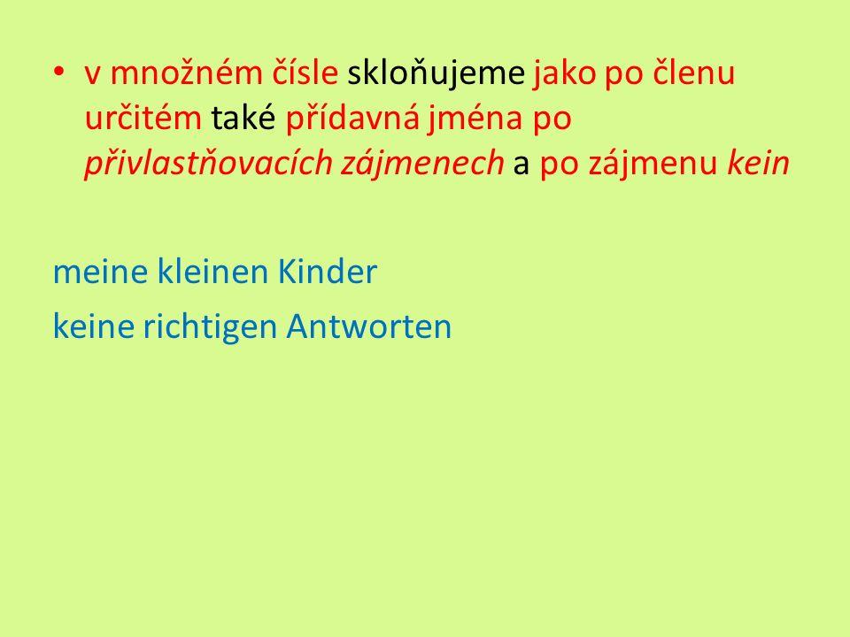 v množném čísle skloňujeme jako po členu určitém také přídavná jména po přivlastňovacích zájmenech a po zájmenu kein meine kleinen Kinder keine richtigen Antworten
