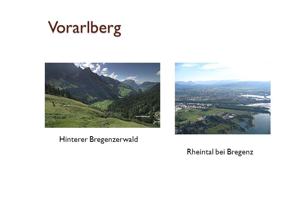 Vorarlberg Hinterer Bregenzerwald Rheintal bei Bregenz