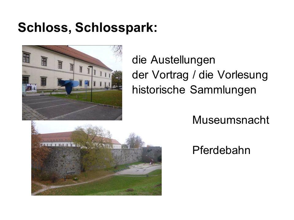Schloss, Schlosspark: die Austellungen der Vortrag / die Vorlesung historische Sammlungen Museumsnacht Pferdebahn