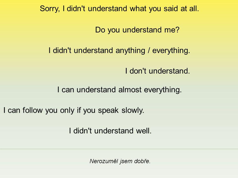 Sorry, I didn t understand what you said at all. Nerozuměl jsem dobře.