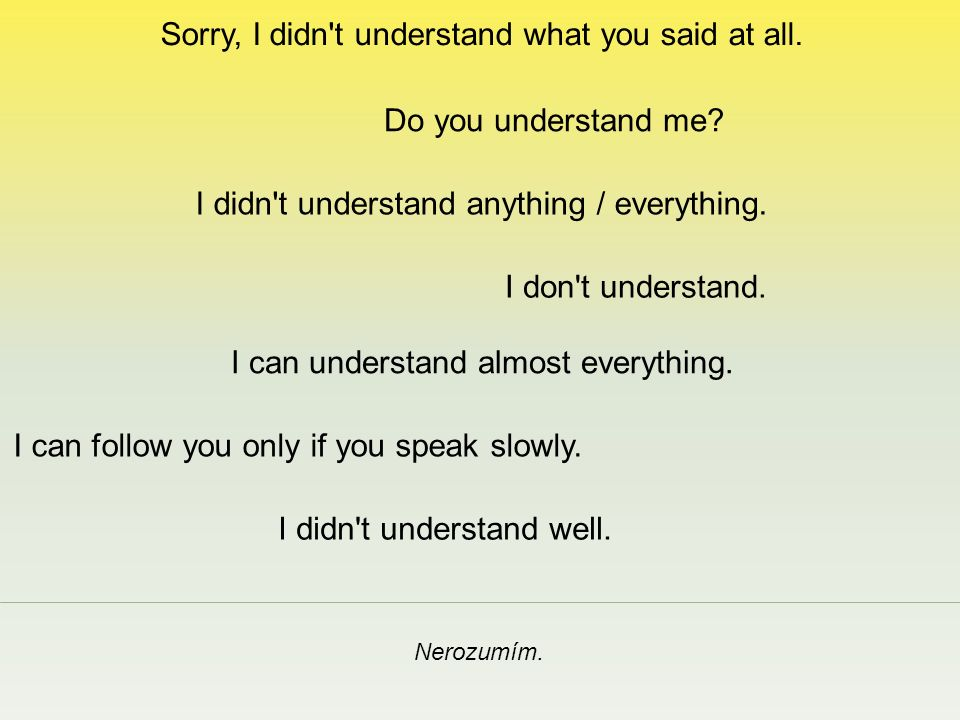 Sorry, I didn t understand what you said at all. Nerozumím.