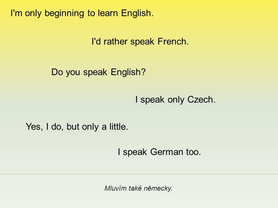 Mluvíte anglicky.I speak only Czech. I d rather speak French.