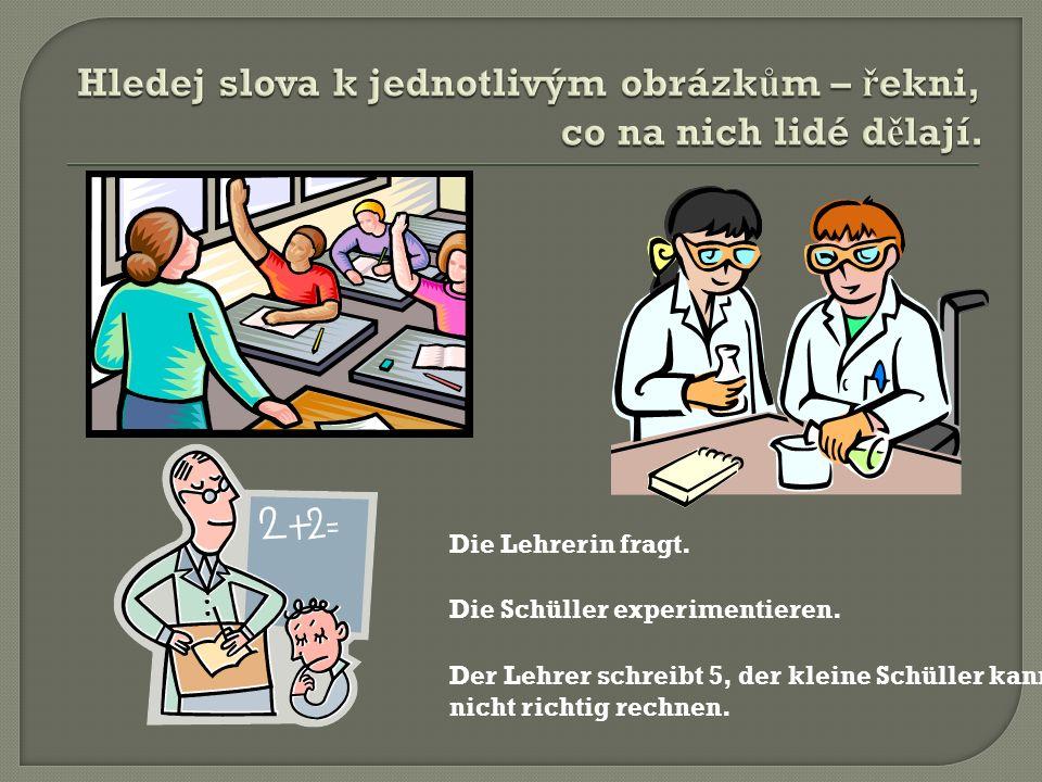 Die Lehrerin fragt. Die Schüller experimentieren. Der Lehrer schreibt 5, der kleine Schüller kann nicht richtig rechnen.