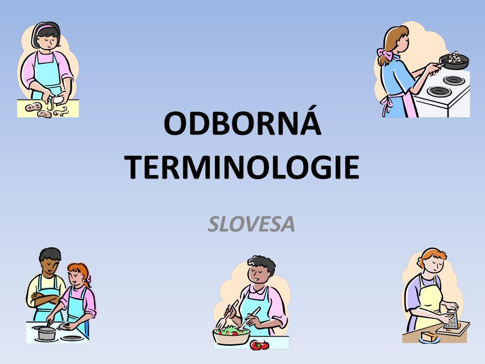 ODBORNÁ TERMINOLOGIE SLOVESA
