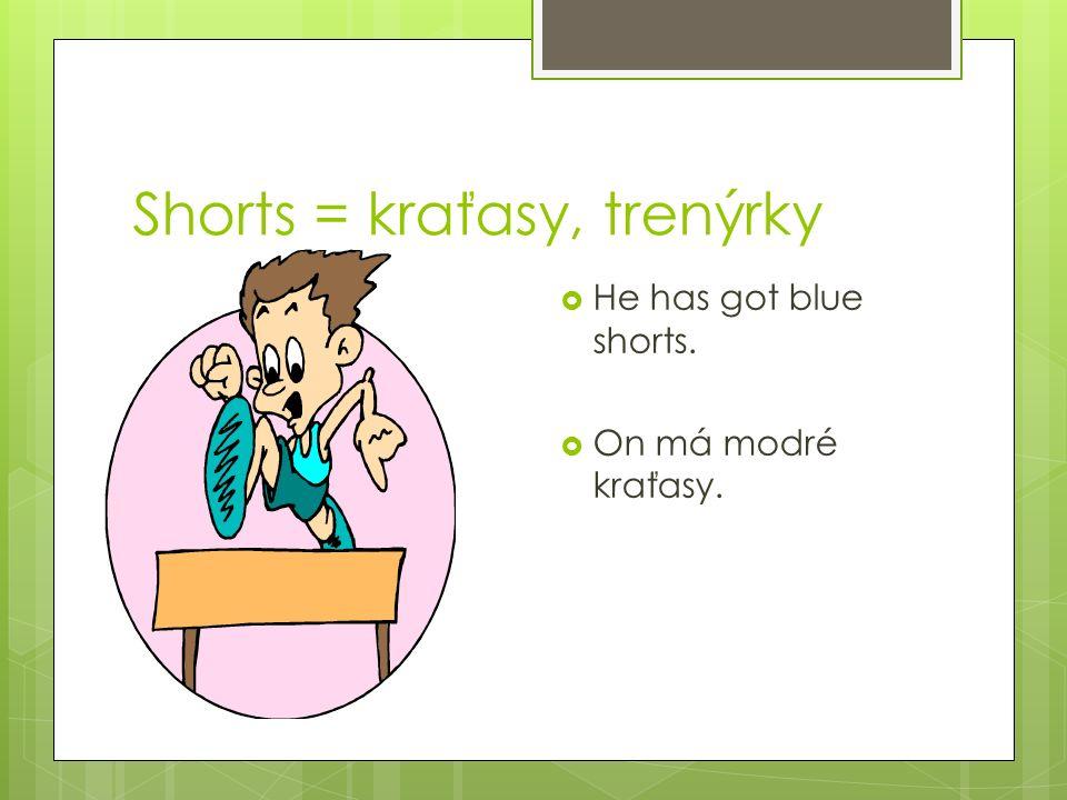 glove rukavice trousers kalhoty knikers kolhotky swimsuit plavky tights punčochy an undershirt tílko