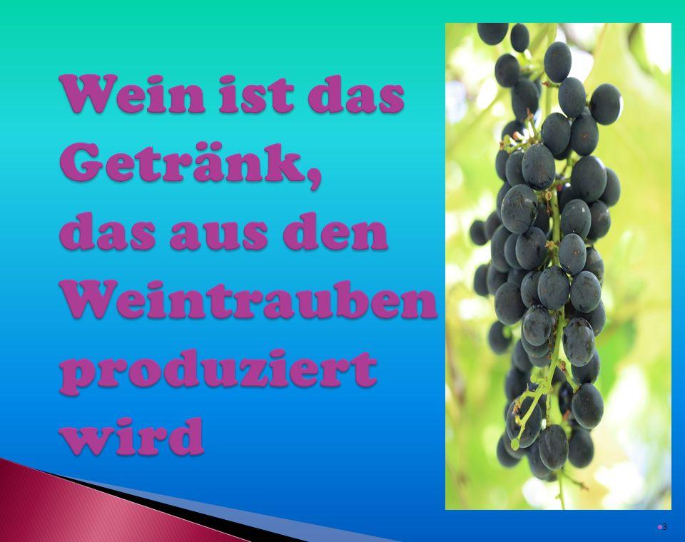  Welche Weinbaugebiete in der Tschechischen Republik kennen Sie.