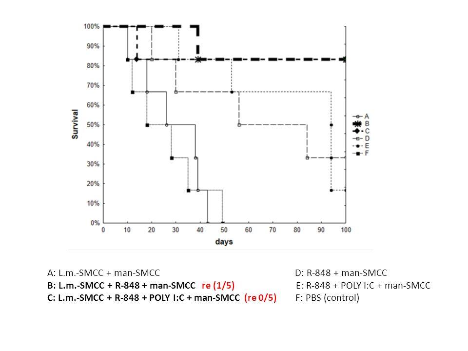 A: L.m.-SMCC + man-SMCC D: R-848 + man-SMCC B: L.m.-SMCC + R-848 + man-SMCC re (1/5) E: R-848 + POLY I:C + man-SMCC C: L.m.-SMCC + R-848 + POLY I:C + man-SMCC (re 0/5) F: PBS (control)