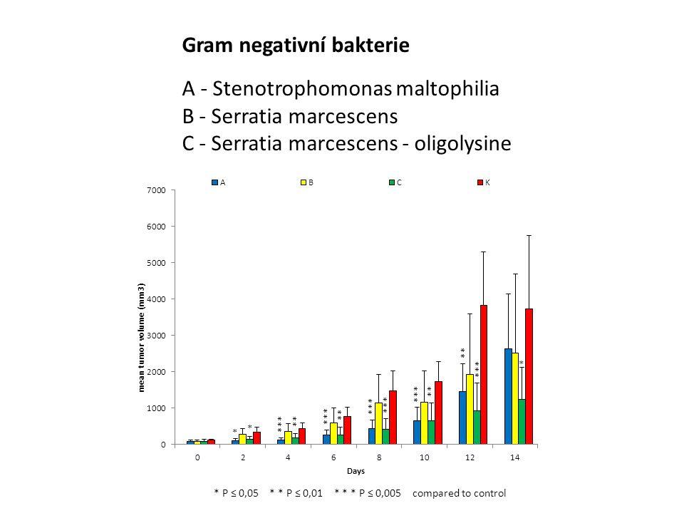 Gram negativní bakterie A - Stenotrophomonas maltophilia B - Serratia marcescens C - Serratia marcescens - oligolysine * P ≤ 0,05 * * P ≤ 0,01 * * * P ≤ 0,005 compared to control