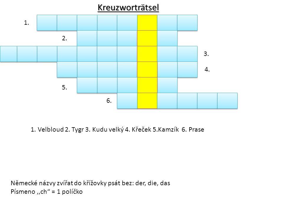"""Německé názvy zvířat do křížovky psát bez: der, die, das Písmeno,,ch"""" = 1 políčko 1. 2. 3. 4. 5. 6. 1. Velbloud 2. Tygr 3. Kudu velký 4. Křeček 5.Kamz"""