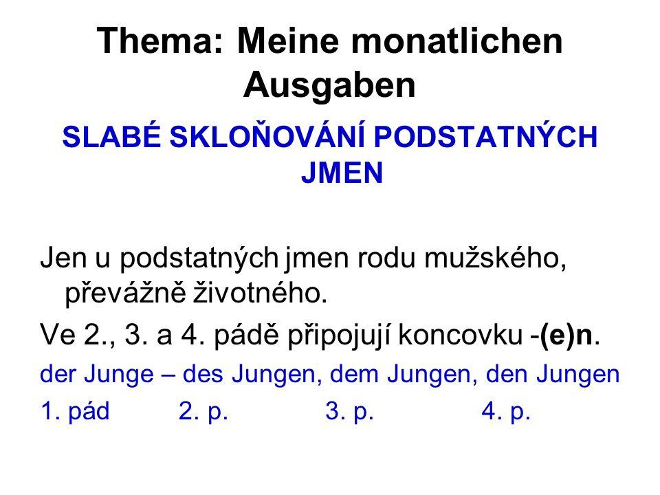 Thema: Meine monatlichen Ausgaben SLABÉ SKLOŇOVÁNÍ PODSTATNÝCH JMEN Jen u podstatných jmen rodu mužského, převážně životného.