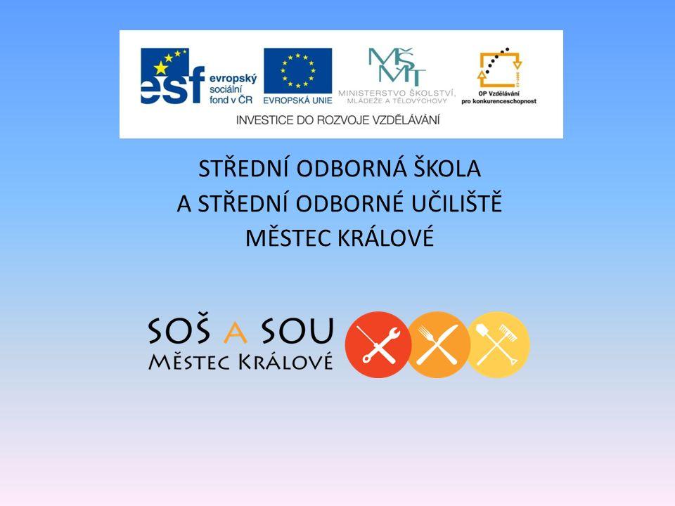 Název projektu : Rozvoj ICT ve výuce na střední škole Registrační číslo projektu: č.