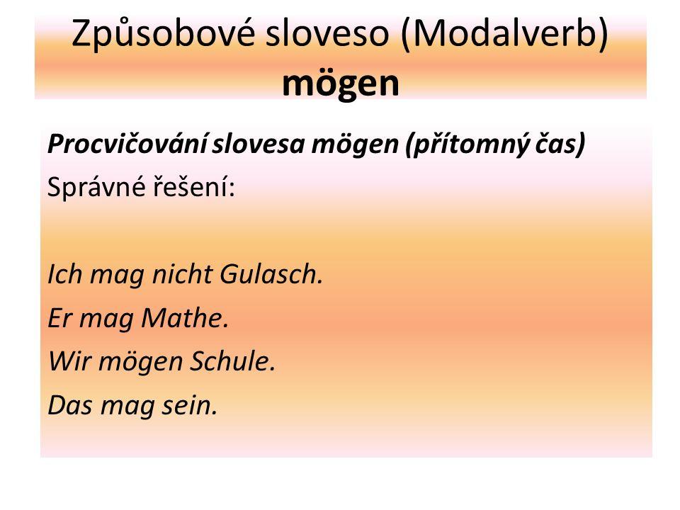 Způsobové sloveso (Modalverb) mögen Procvičování slovesa mögen (přítomný čas) Správné řešení: Ich mag nicht Gulasch.
