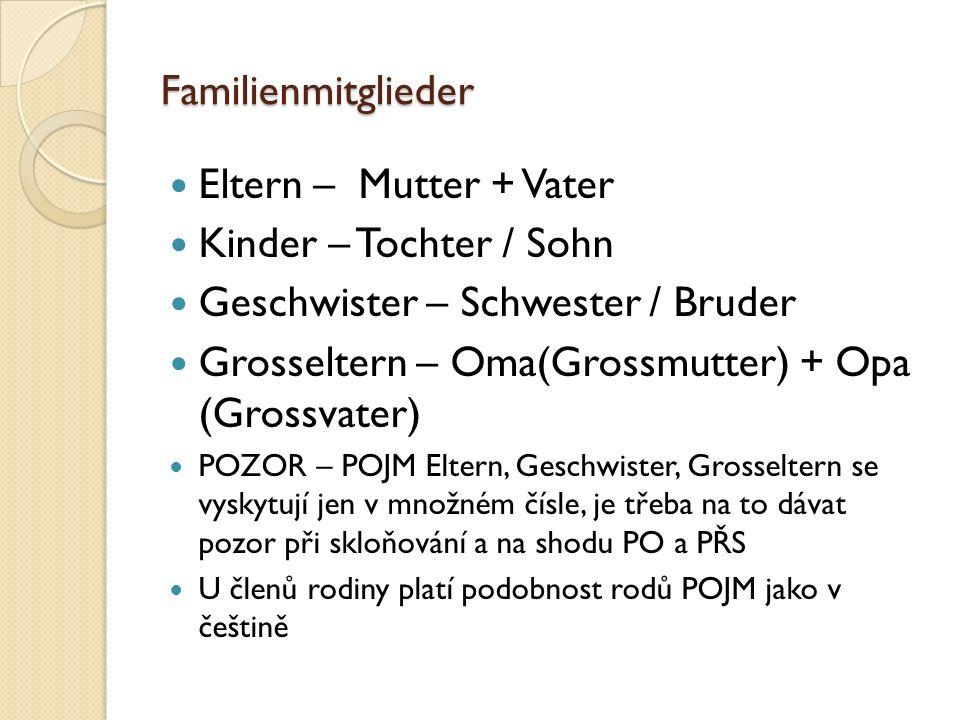 Familienmitglieder Eltern – Mutter + Vater Kinder – Tochter / Sohn Geschwister – Schwester / Bruder Grosseltern – Oma(Grossmutter) + Opa (Grossvater)