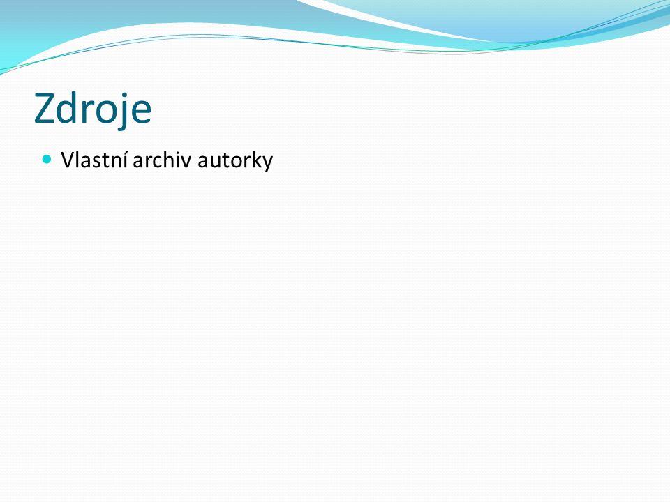 Zdroje Vlastní archiv autorky