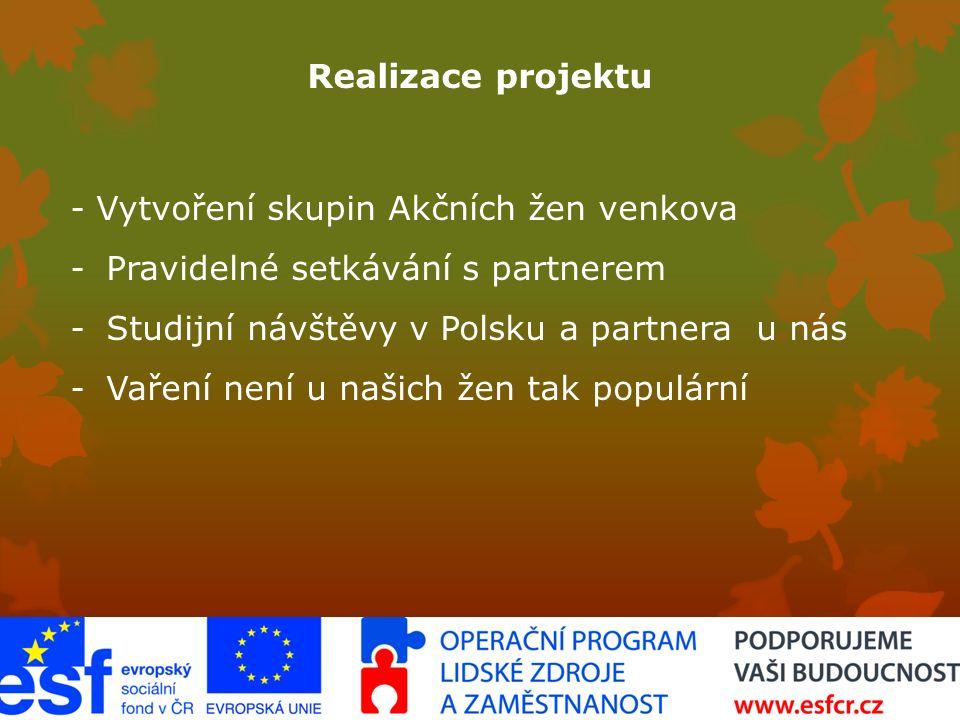 Realizace projektu - Vytvoření skupin Akčních žen venkova -Pravidelné setkávání s partnerem -Studijní návštěvy v Polsku a partnera u nás -Vaření není u našich žen tak populární