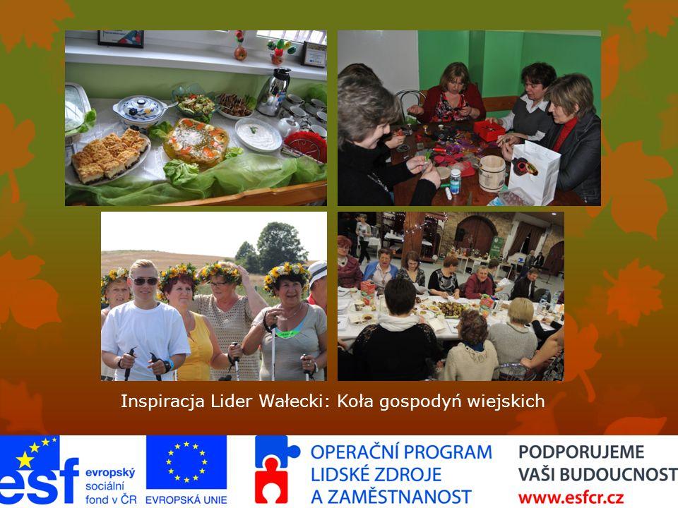 Inspiracja Lider Wałecki: Koła gospodyń wiejskich