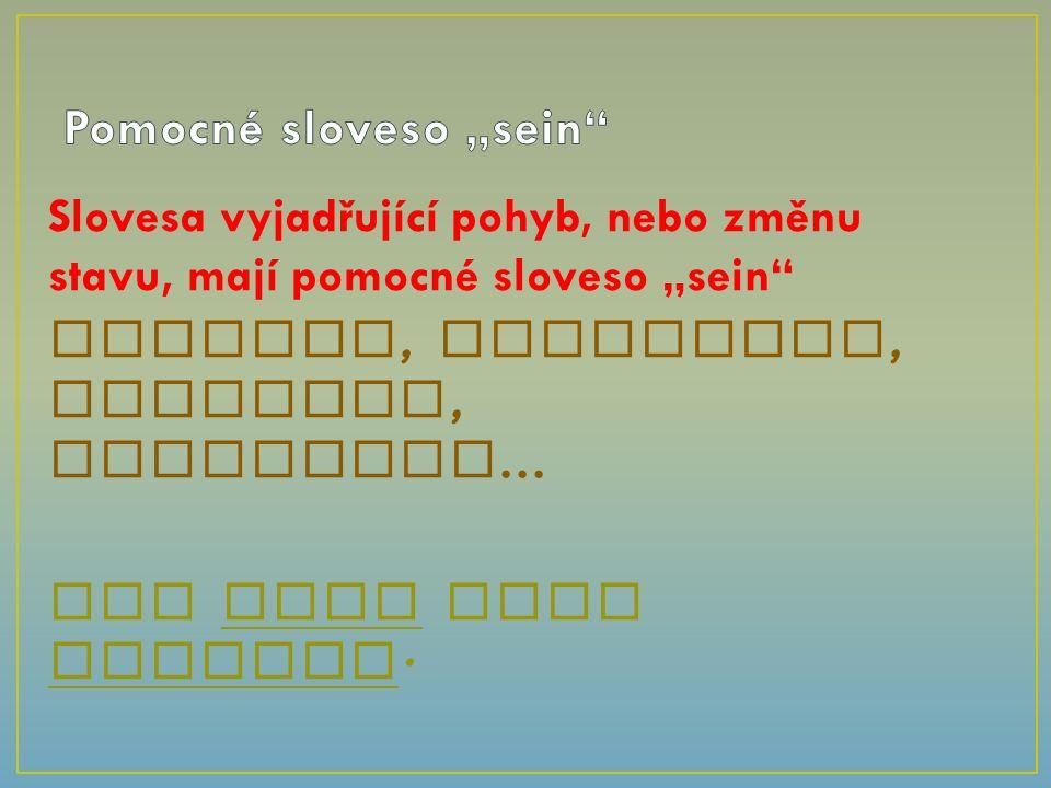 """Slovesa vyjadřující pohyb, nebo změnu stavu, mají pomocné sloveso """"sein wandern, aufwachen, rutschen, passieren… Wir sind viel gereist."""