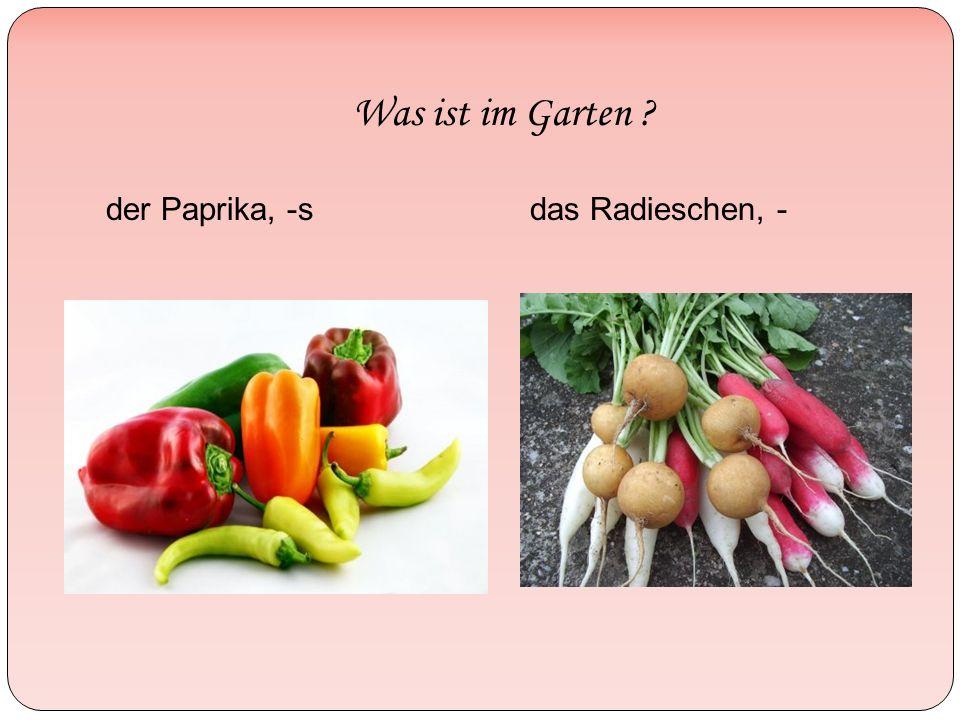 Was ist im Garten ? der Paprika, -sdas Radieschen, -