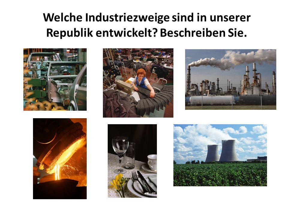 Welche Industriezweige sind in unserer Republik entwickelt Beschreiben Sie.