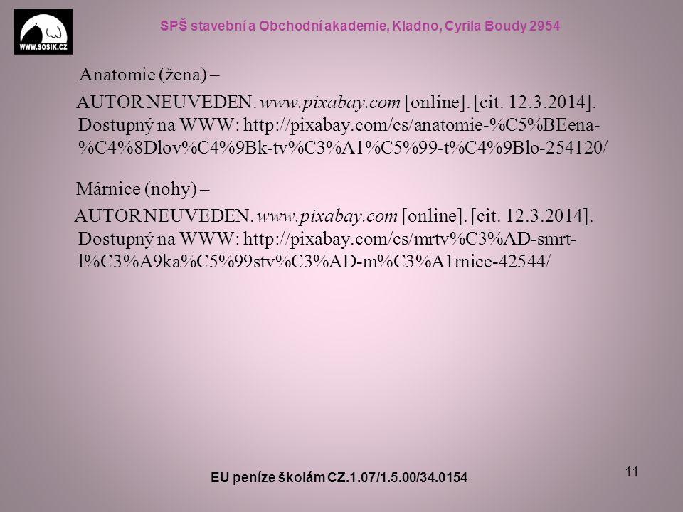 SPŠ stavební a Obchodní akademie, Kladno, Cyrila Boudy 2954 Anatomie (žena) – AUTOR NEUVEDEN. www.pixabay.com [online]. [cit. 12.3.2014]. Dostupný na