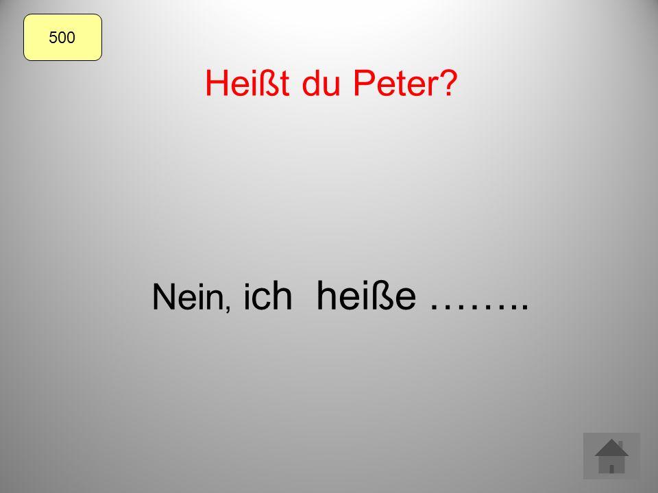 Heißt du Peter Nein, i ch heiße …….. 500