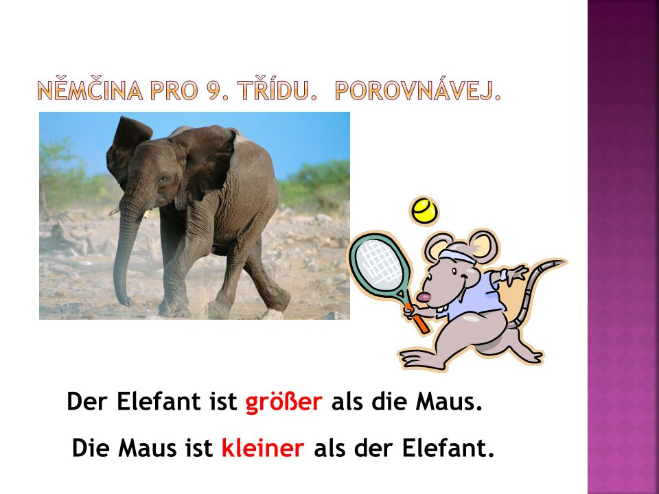 Der Elefant ist größer als die Maus. Die Maus ist kleiner als der Elefant.