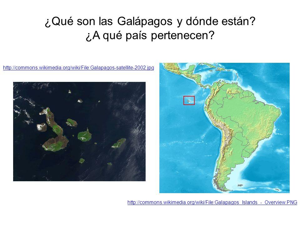 ¿Qué son las Galápagos y dónde están? ¿A qué país pertenecen? http://commons.wikimedia.org/wiki/File:Galapagos-satellite-2002.jpg http://commons.wikim
