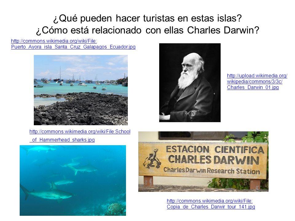 ¿Qué pueden hacer turistas en estas islas? ¿Cómo está relacionado con ellas Charles Darwin? http://commons.wikimedia.org/wiki/File: Copia_de_Charles_D