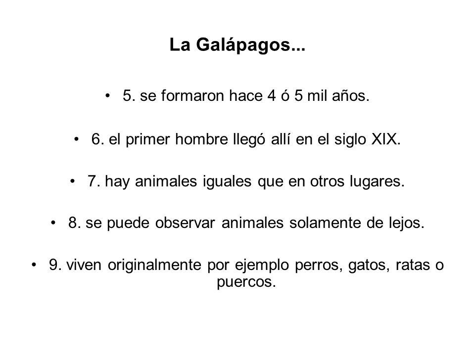 La Galápagos... 5. se formaron hace 4 ó 5 mil años. 6. el primer hombre llegó allí en el siglo XIX. 7. hay animales iguales que en otros lugares. 8. s