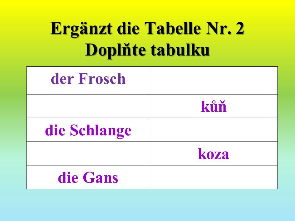 Ergänzt die Tabelle Nr. 2 Doplňte tabulku der Frosch kůň die Schlange koza die Gans
