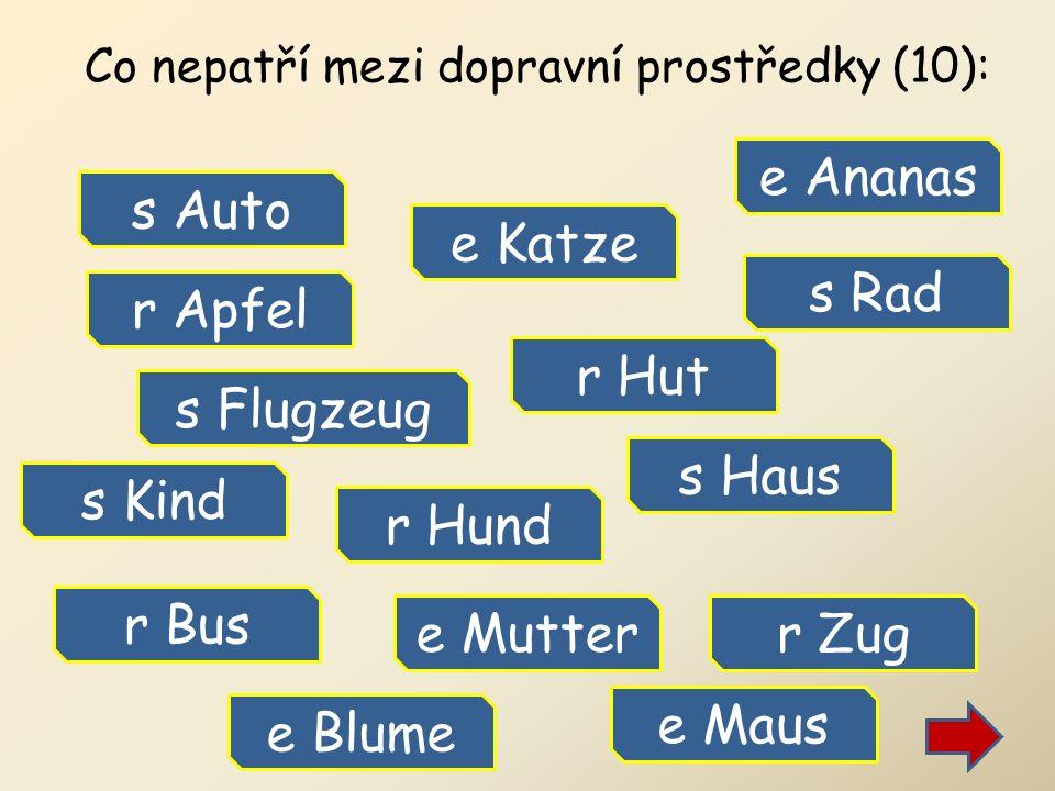 Co nepatří mezi dopravní prostředky (10): s Auto r Bus s Rad s Flugzeug r Zug s Haus e Katze e Blume r Hund e Mutter s Kind e Maus r Hut r Apfel e Ananas