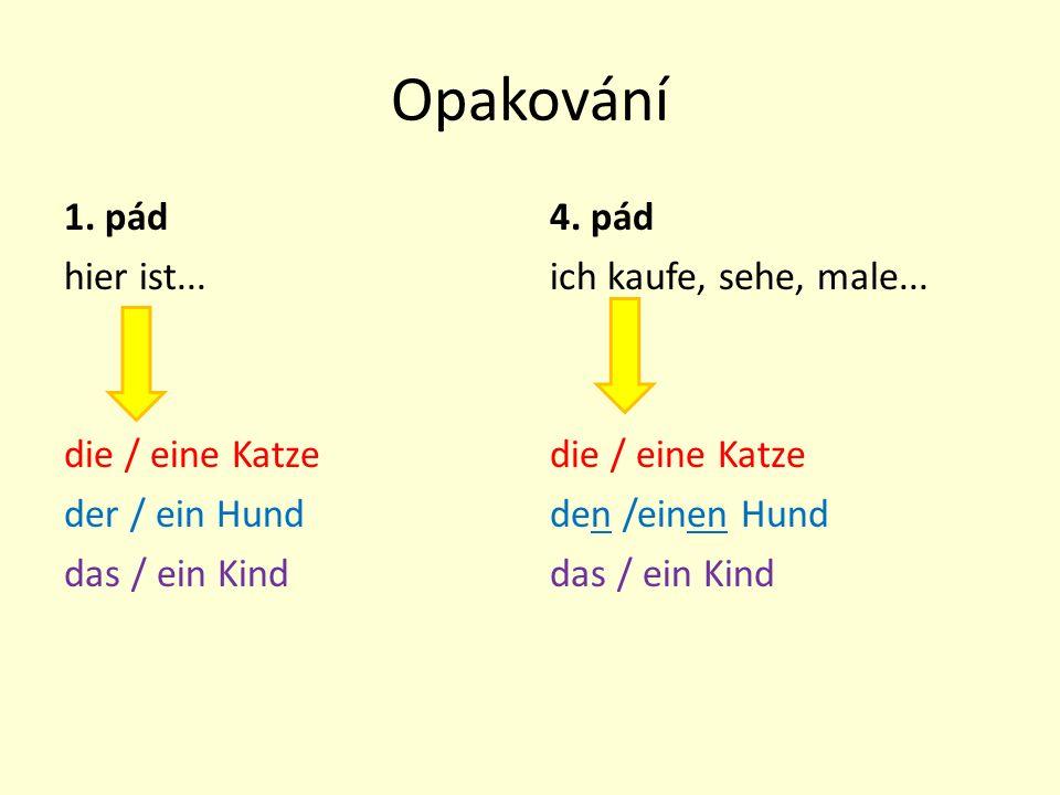 Opakování 1. pád hier ist... die / eine Katze der / ein Hund das / ein Kind 4. pád ich kaufe, sehe, male... die / eine Katze den /einen Hund das / ein