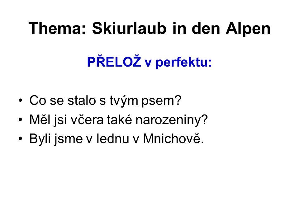 Thema: Skiurlaub in den Alpen PŘELOŽ v perfektu: Co se stalo s tvým psem.