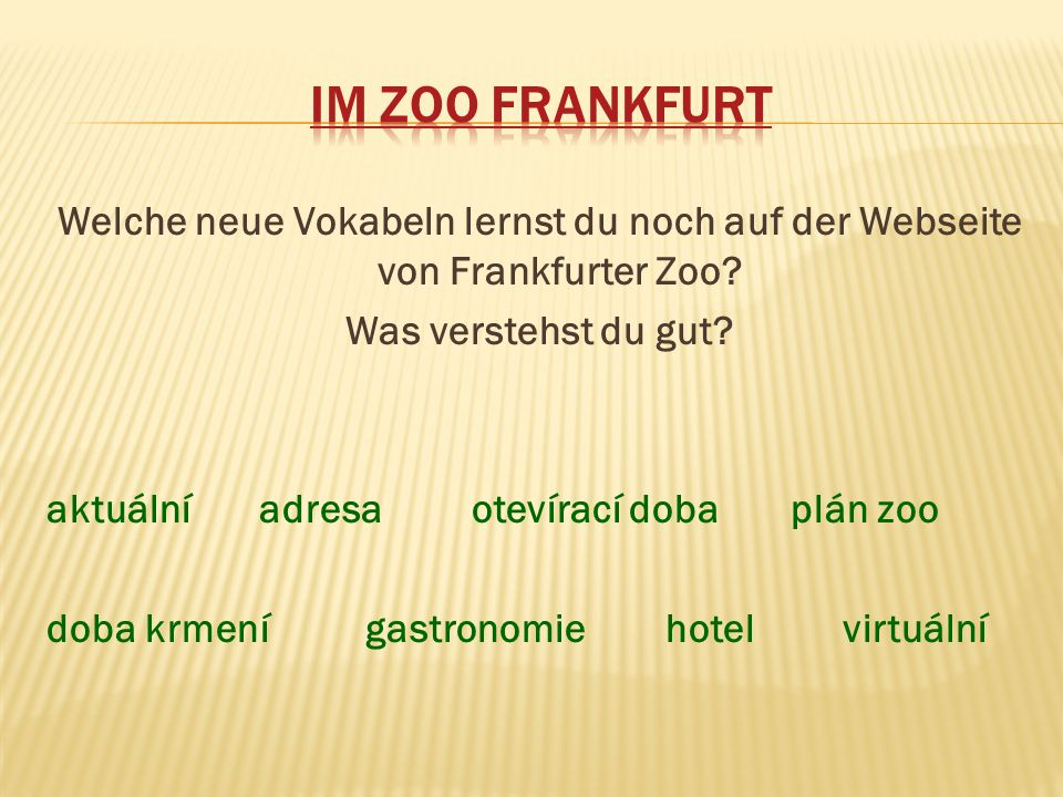 Welche neue Vokabeln lernst du noch auf der Webseite von Frankfurter Zoo? Was verstehst du gut? aktuálníadresaotevírací dobaplán zoo doba krmenígastro