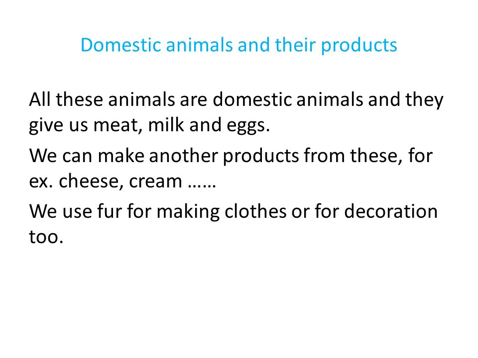 Domestic animals and their products All these animals are domestic animals and they give us meat, milk and eggs.