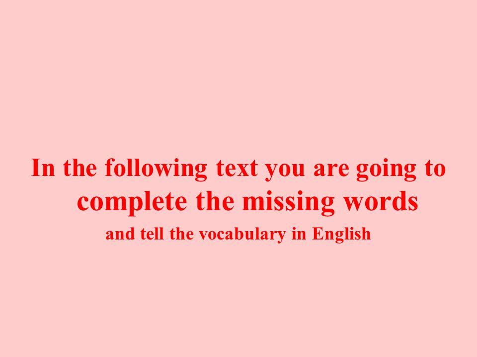 Translate the sentences