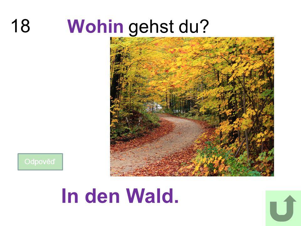 18 Wohin gehst du? Odpověď In den Wald.