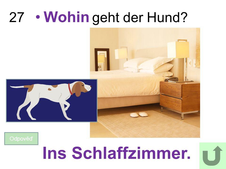 2727 Wohin geht der Hund? Odpověď Ins Schlaffzimmer.