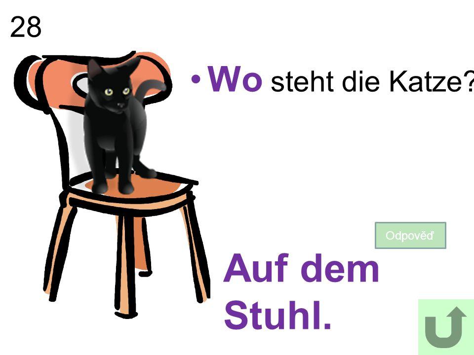 28 Wo steht die Katze? Odpověď Auf dem Stuhl.