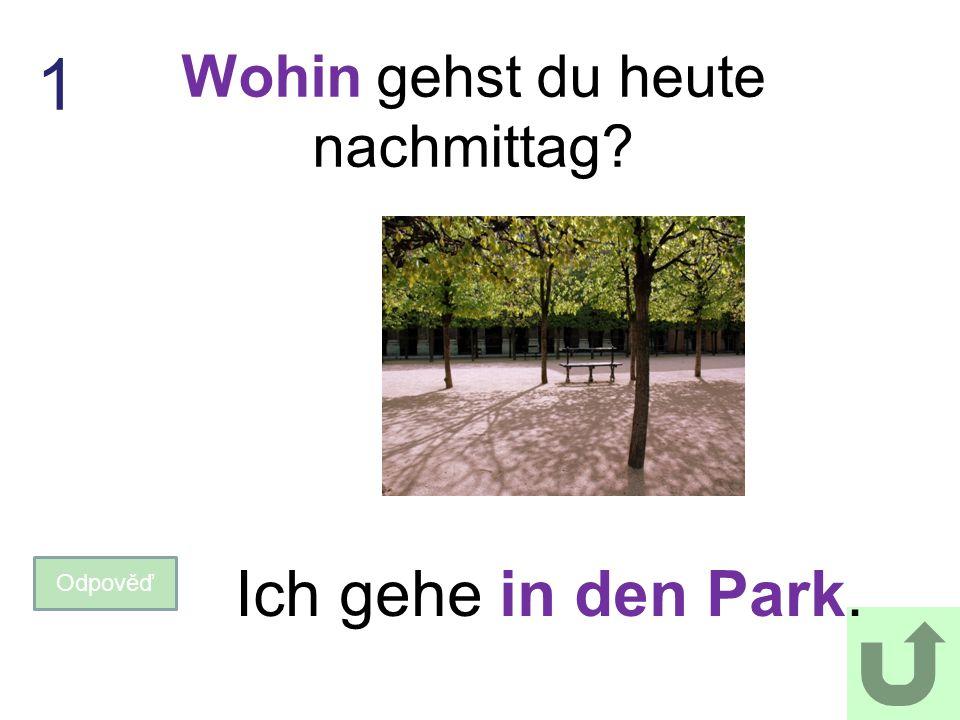 Wohin gehst du heute nachmittag? Odpověď Ich gehe in den Park. 1