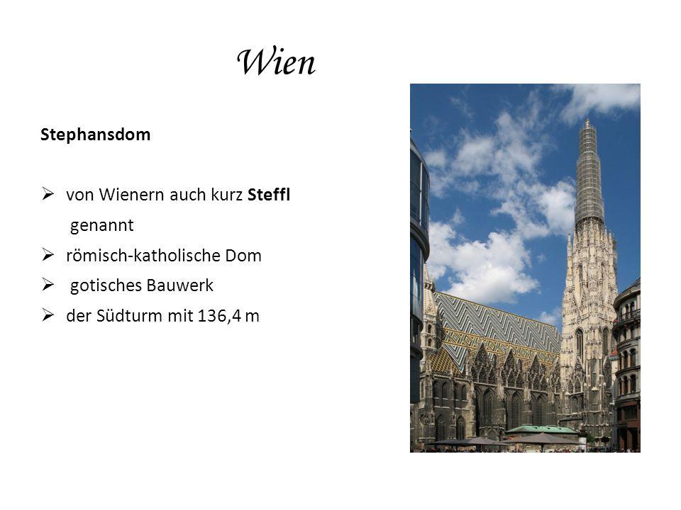 Wien Stephansdom  von Wienern auch kurz Steffl genannt  römisch-katholische Dom  gotisches Bauwerk  der Südturm mit 136,4 m