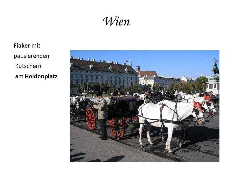 Wien Fiaker mit pausierenden Kutschern am Heldenplatz