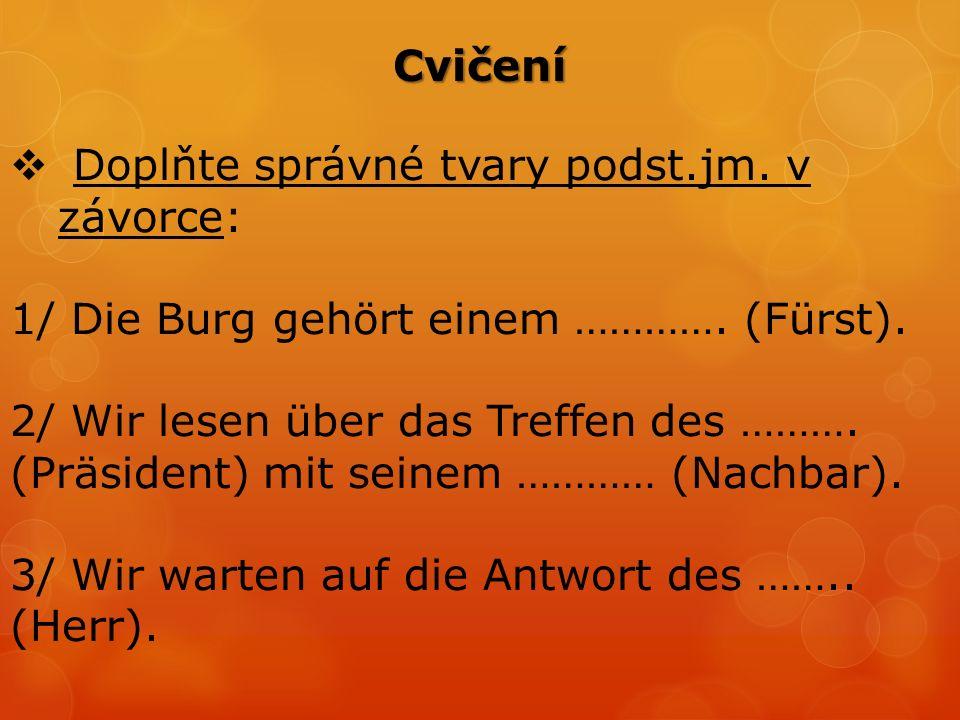 Cvičení  Doplňte správné tvary podst.jm. v závorce: 1/ Die Burg gehört einem ………….