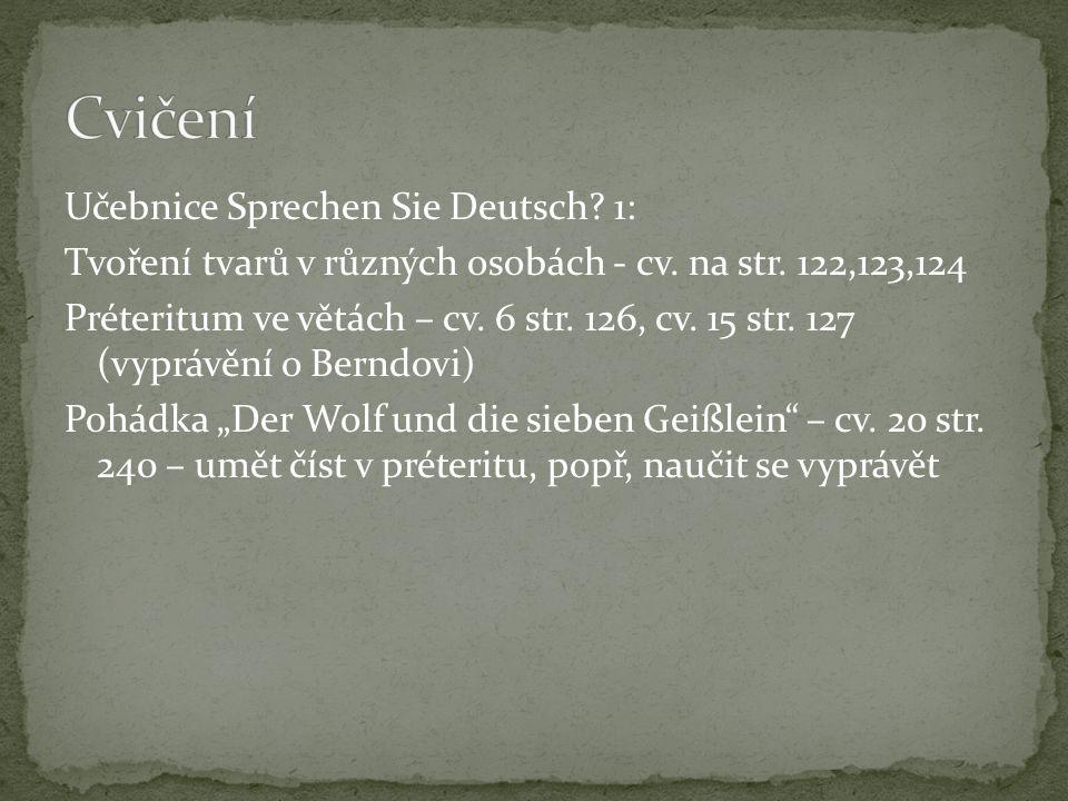 Učebnice Sprechen Sie Deutsch. 1: Tvoření tvarů v různých osobách - cv.