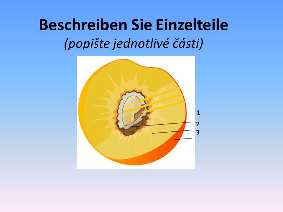 Beschreiben Sie Einzelteile (popište jednotlivé části) 2 1 3
