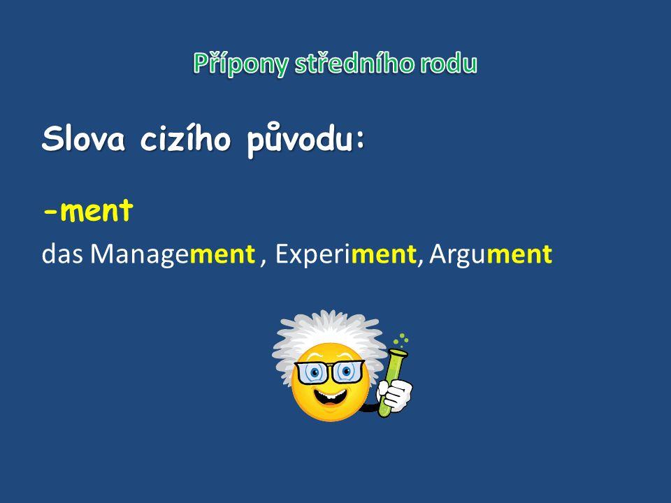 Slova cizího původu: -ment das Management, Experiment, Argument